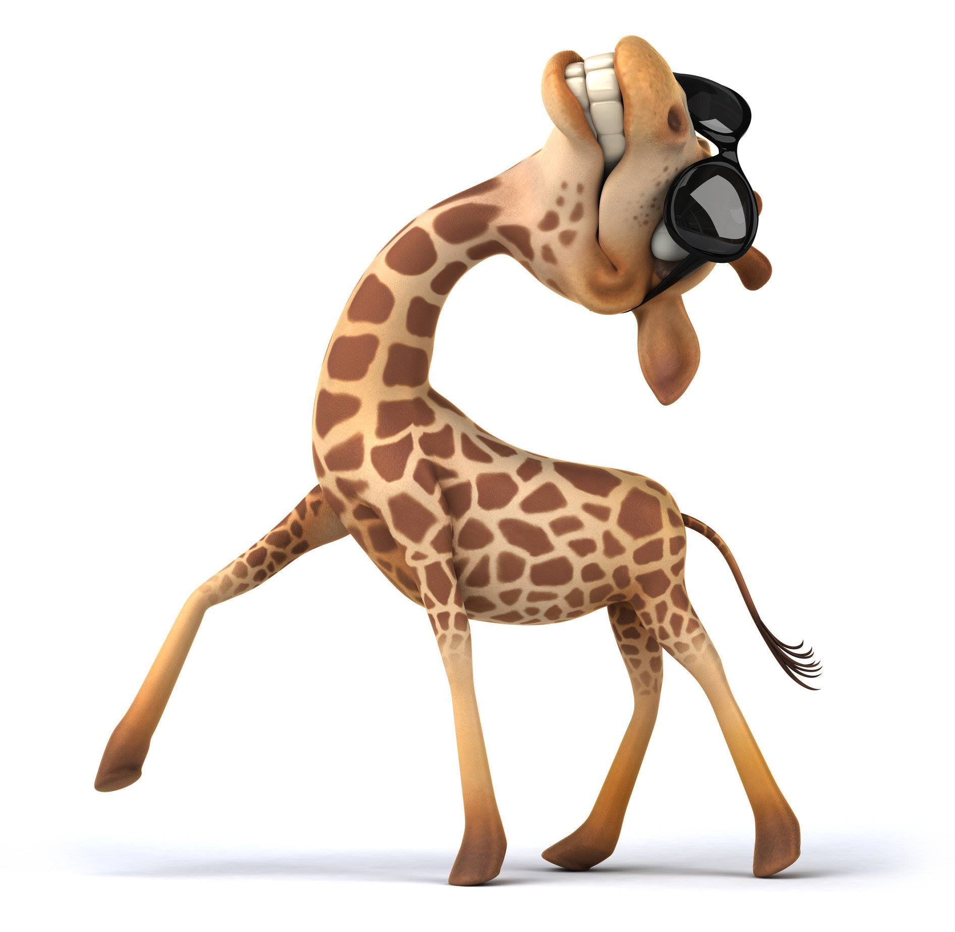 Giraffe Dance Zürich